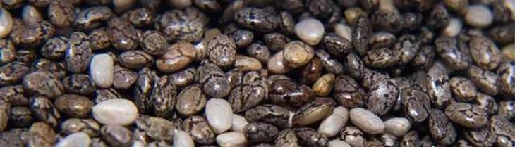 תרופות סבתא נגד אלרגיה: זרעי צ'יה
