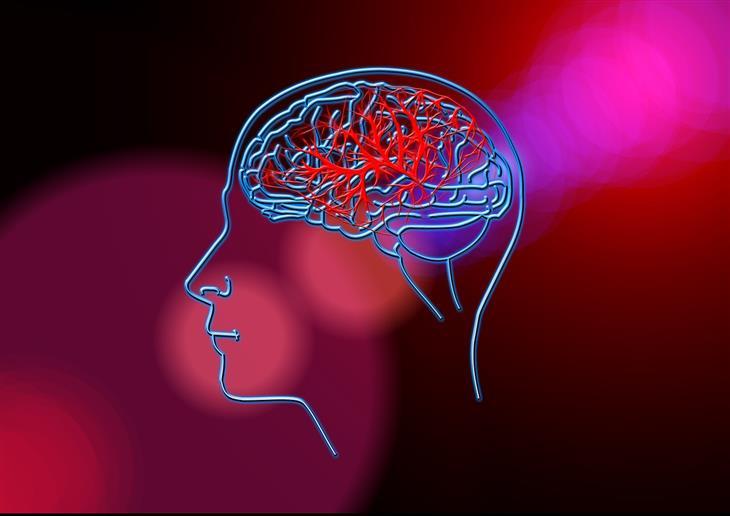 חידושים בתחום הרפואה: איור של מוח אדם עם כלי דם