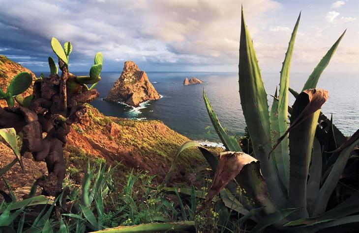 תמונות מדהימות של האיים הקנריים