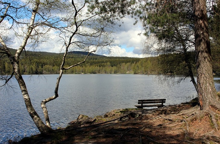 אתרים באוסלו: אגם וספסל לצידו ביער נורדמרקה