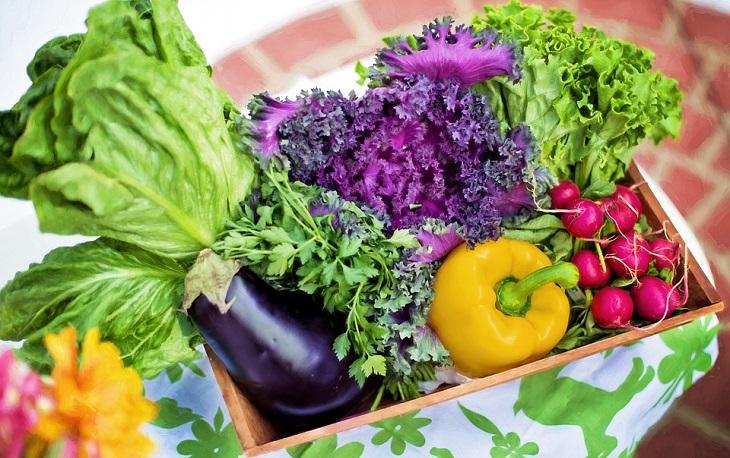 אירועי שבועות 2019: סלסלת ירקות