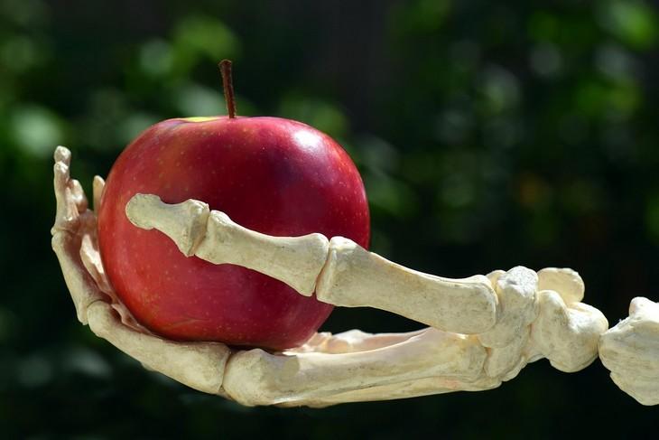יתרונות בריאותיים של הכרישה: יד של שלד מחזיקה תפוח