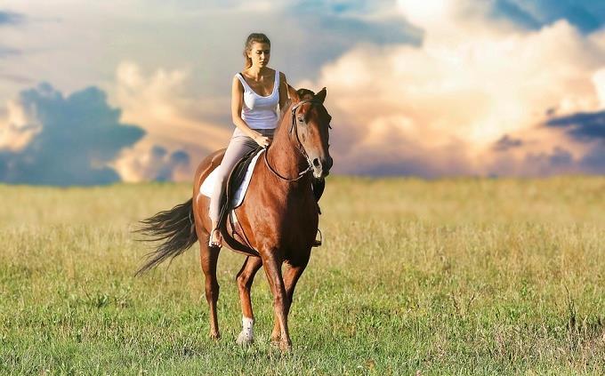 בחן את עצמך: בחורה רוכבת על סוס
