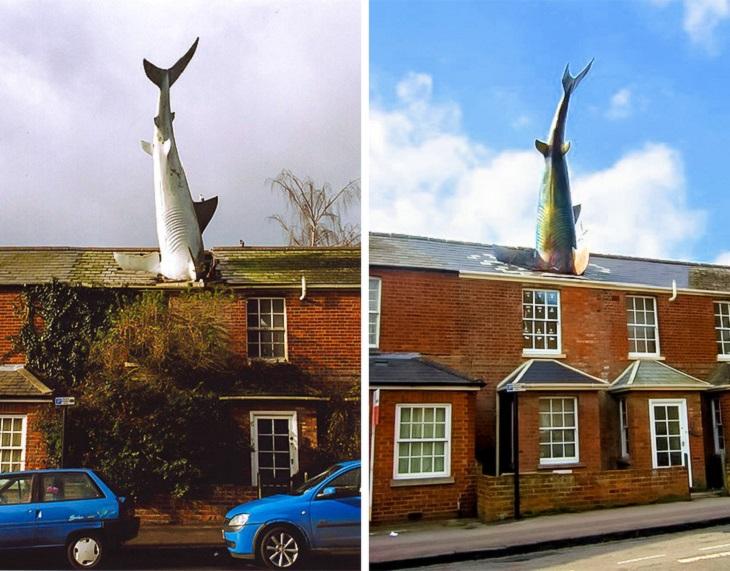 פסלים עם סיפורים: פסל כריש הדינגטון