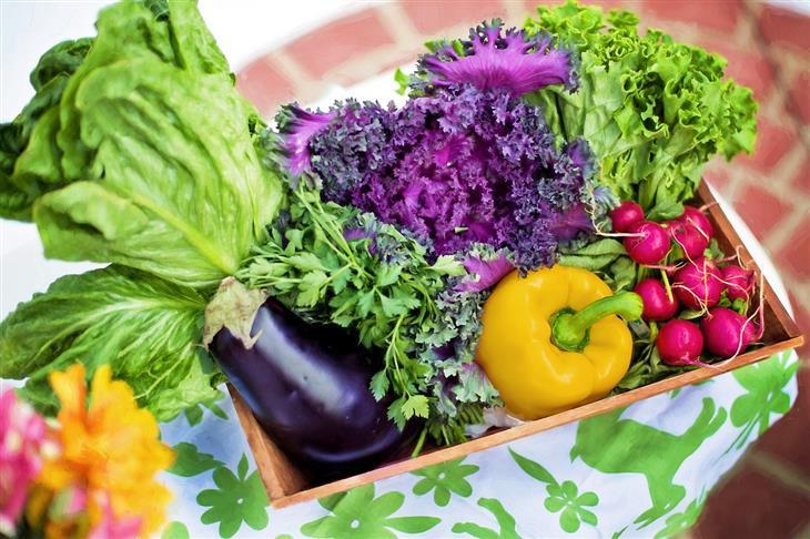 מה קורה אם לא אוכלים מספיק פירות: ירקות בסלסלה