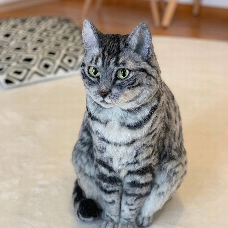 חיות צמר מציאותיות: חתול