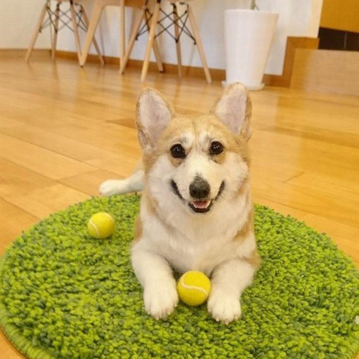 חיות צמר מציאותיות: כלב על שטיחון וסביבו כדורי טניס
