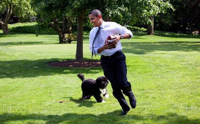 בחן את עצמה: הנשיא אובמה משחק עם כלב