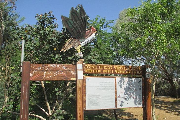 אתרים באילת ובסביבה: שלט על רקע עצים בפארק הצפרות באילת