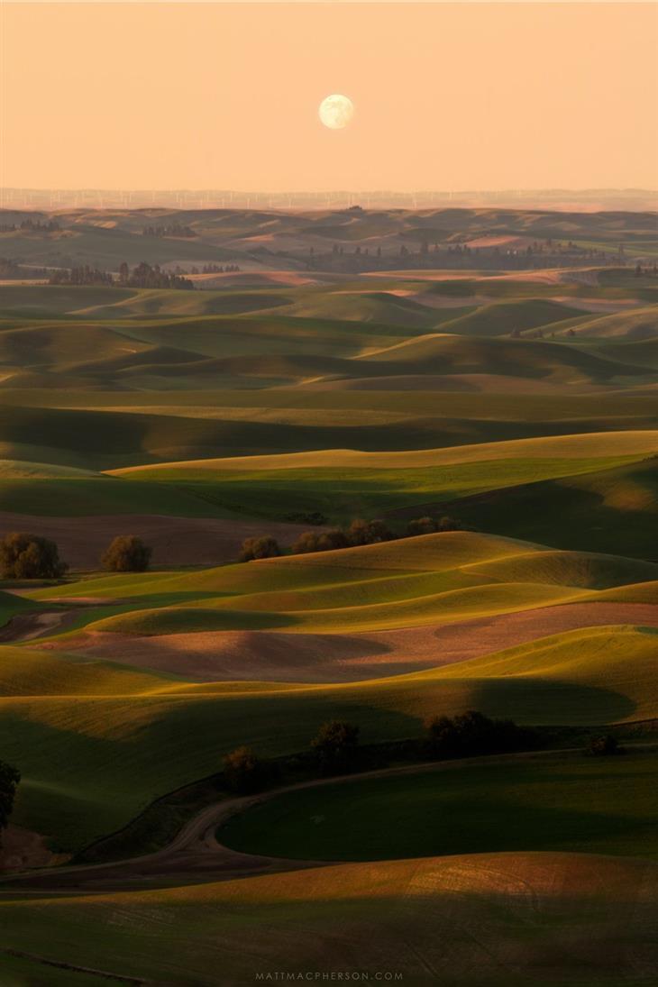 נופים מדהימים מרחבי העולם: נוף ירוק בפאלוס, וושינגטון