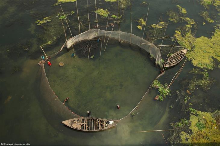 תחרות צילום האוכל פינק ליידי 2019: דייגי רשתות בנהר