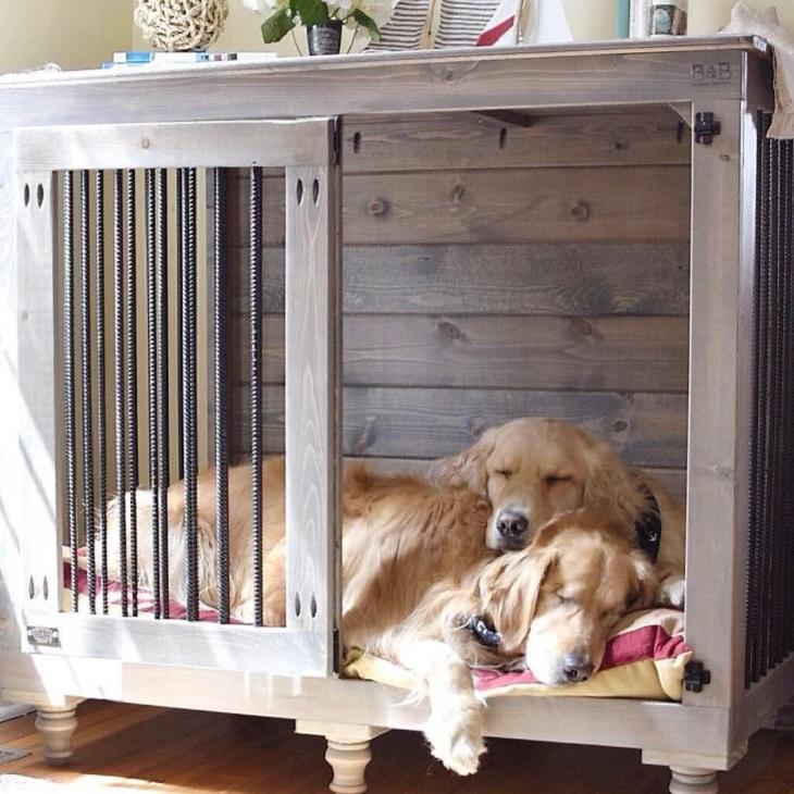 הכלב העיוור שיש לו כלבת נחייה: ג'ייק והדי מתכרבלים בתוך לול