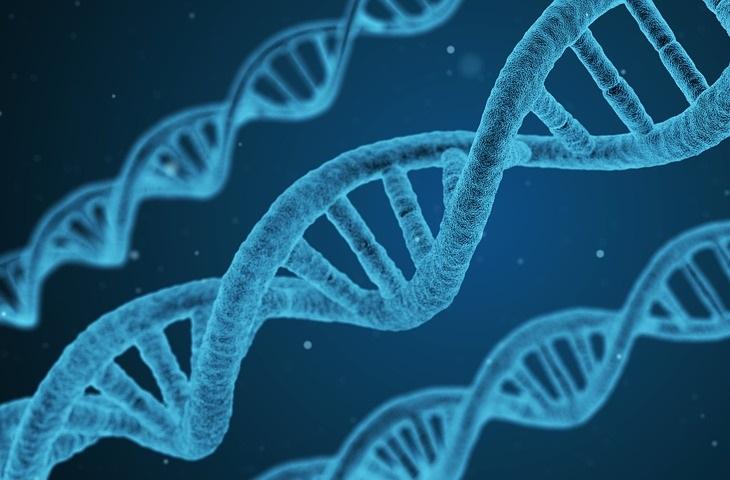 היריון בגיל מבוגר: סלילים של DNA