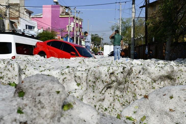סופת שלגים קייצית במקסיקו