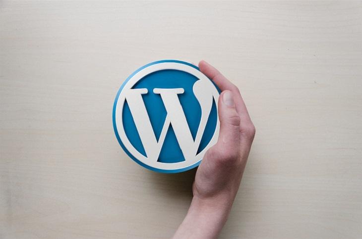 פלטפורמת וורדפרס: הלוגו של וורדפרס