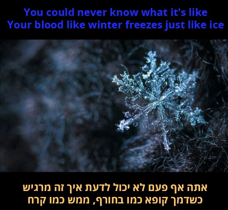 תרגום לשיר אני עדיין עומד: אתה אף פעם לא יכול לדעת איך זה מרגיש, כשדמך קופא כמו בחורף, ממש כמו קרח