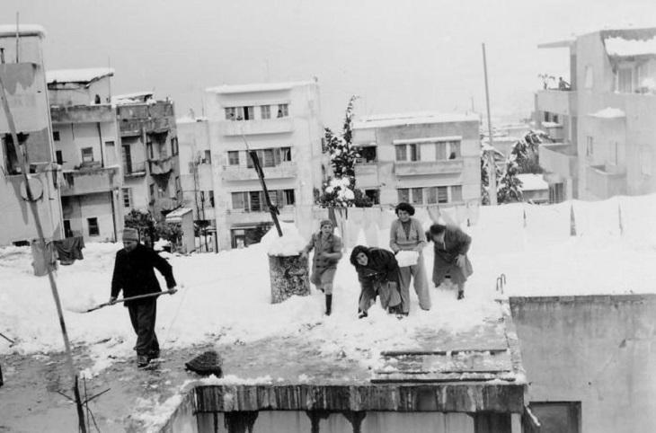 תמונות היסטוריות של חיפה: תושבים משחקים בשלג בחיפה. שנת 1950.