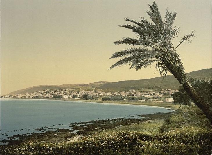 תמונות היסטוריות של חיפה: צילום פטרוכרום של כפר סמיר מסוף המאה ה-19.