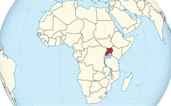 מבחן ידע כללי: אוגנדה מסומנת על מפת העולם