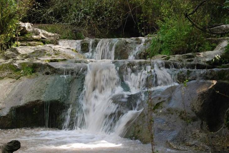 מקומות מומלצים לטיול ופיקניק משפחתי: פארק מנשה ונחל השופט