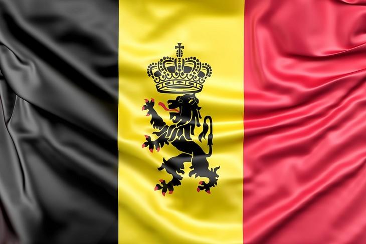 עובדות על אריות: דגל בלגיה