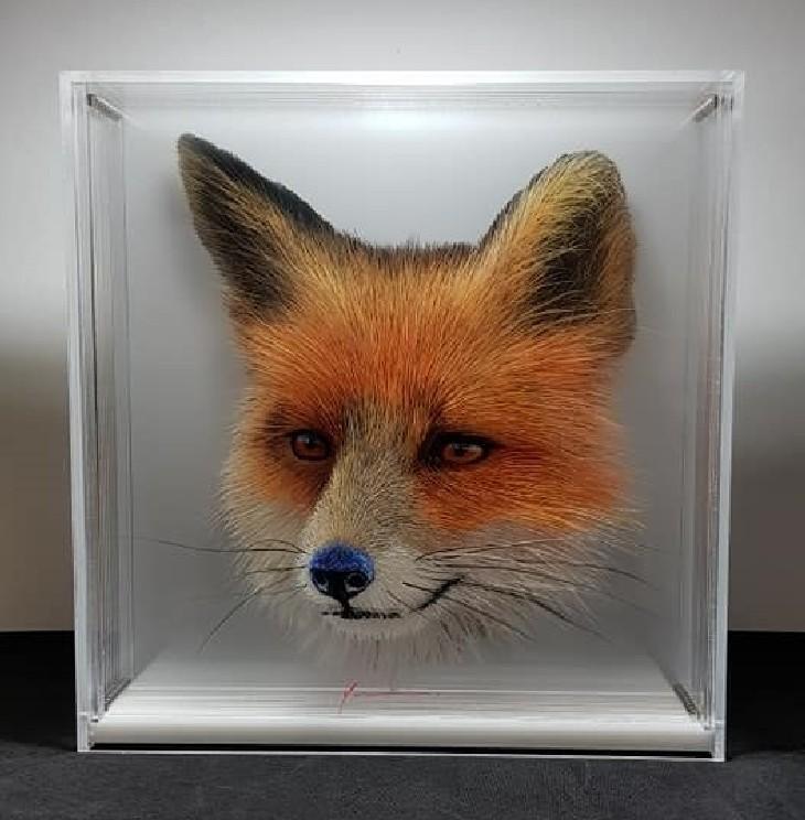 ציורי בעלי חיים בתלת מימד: ציור בתלת מימד של שועל