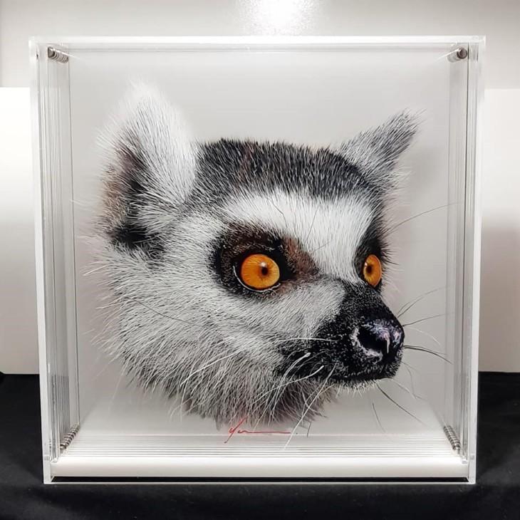 ציורי בעלי חיים בתלת מימד: ציור בתלת מימד של למור