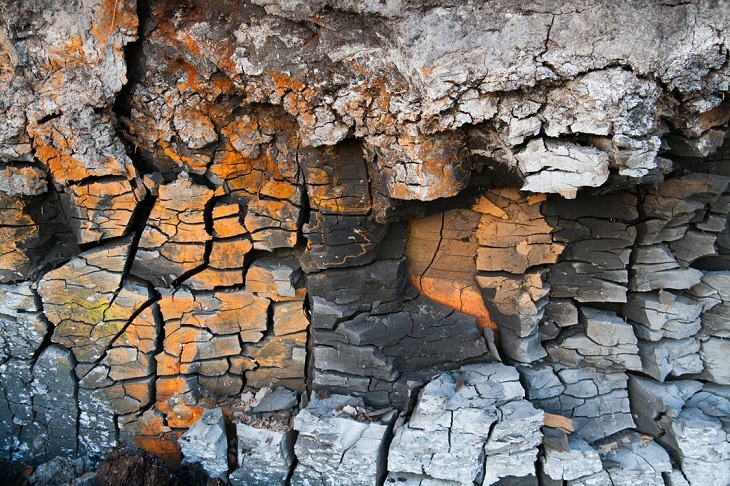 סימנים שמעידים על חוסר סיפוק מהקשר: סדקים בעץ
