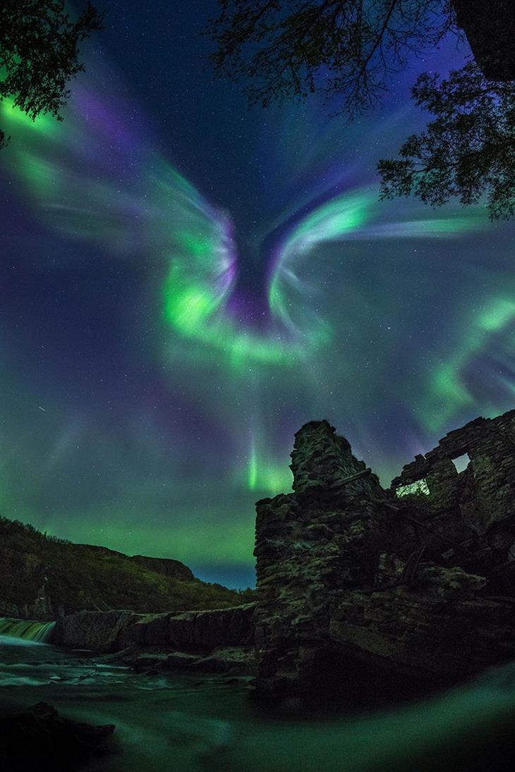 צילום אסטרונומי: הזוהר הצפוני בצורת ציפור