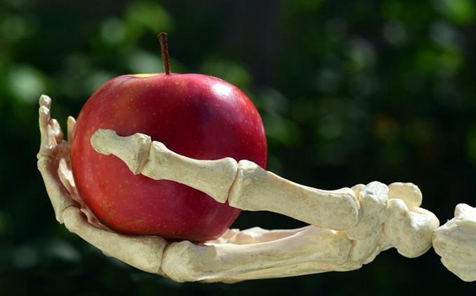 מבחן טריוויה ידע כללי: יד של שלד מחזיקה תפוח