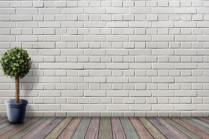 מבחן אישיות לפי צבעים של רהיטים: עציץ על רקע קיר מלבנים