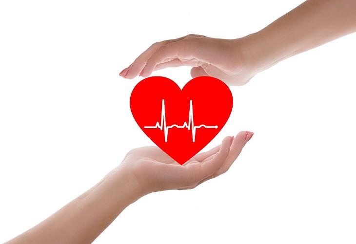 יתרונות האורגנו: שתי ידיים אוחזות באיור של לב שקו דופק עובר בו