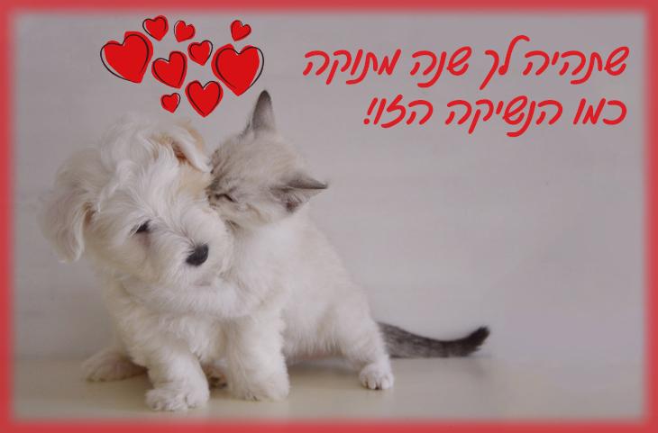 שתהיה לך שנה מתוקה כמו הנשיקה הזו!