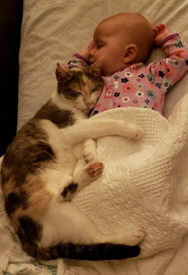 תמונות של בעלי חיים חמודים: חתול מחבק תינוק ישן