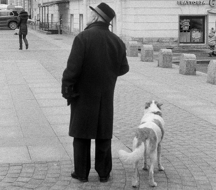 סיפור מרגש על כלב: אדם מבוגר וכלב ברחוב