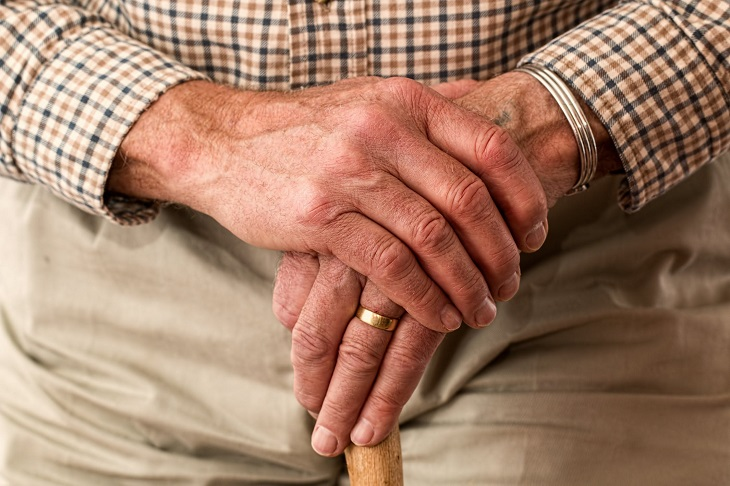 סיפור מרגש על כלב: ידיים של אדם מבוגר