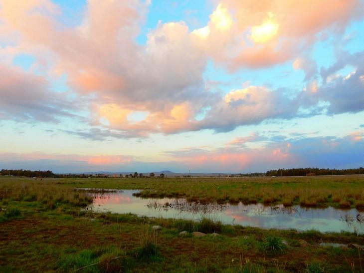 מסלולי טיול ברמת הגולן: שמורת נוב
