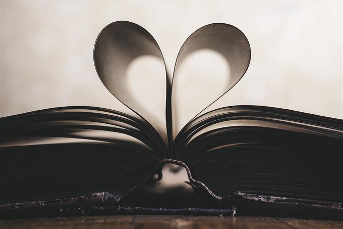 מבחן ארכיטיפים: ספר פתוח שעמודיו יוצרים צורת לב