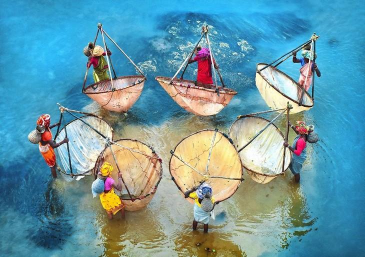 תמונות מדהימות: נשים בלבוש צבעוני דגות בחופי מערב בנגל שבהודו