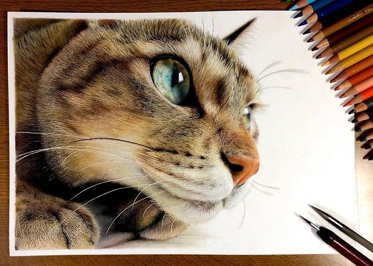 ציורים של חתולים שנראים כמו תמונה אמיתית