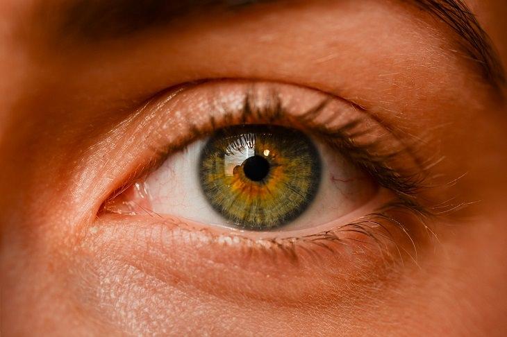 מקורות ויטמין A: עין של אישה