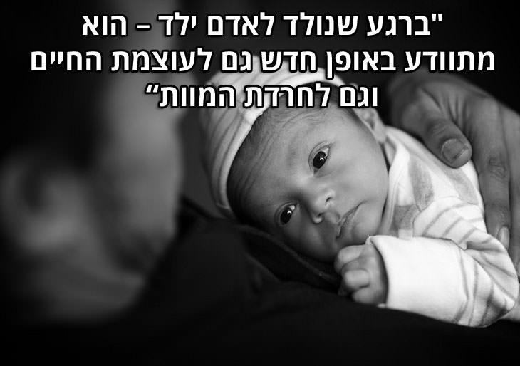 """ציטוטי דויד גרוסמן: """"ברגע שנולד לאדם ילד - הוא מתוודע באופן חדש גם לעוצמת החיים וגם לחרדת המוות"""""""