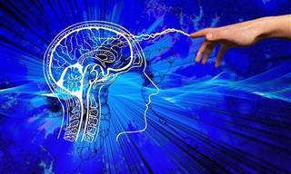 אוסף כתבות על המוח: איור של אצבע מצביע על מוח אנושי וזרם עובר ביניהם