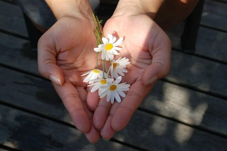 מחקרים על אושר: ידיים מגישות פרחים