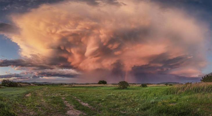 צלם מזג האוויר 2020: סופת טורנדו מתהווה מעל שדה ירוק