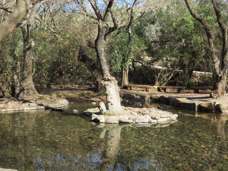 אתרי טיולים מהמקרא: מעיין בתל דן