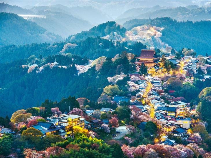 תמונות של יפן: הר יושינו