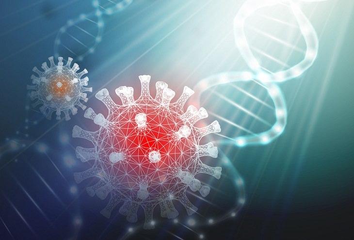 מיתוסים שגויים על חיסון הקורונה: תא קורונה וסליל DNA