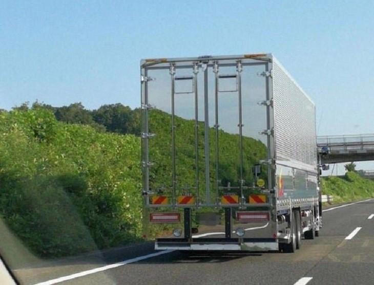 תמונות ברגע הנכון: משאית