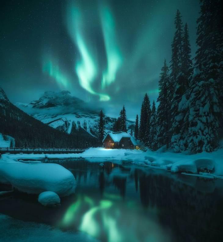 תחרות צלם זוהר הקוטב 2020: בקתה ליד אגם ועצים מושלגים, וזוהר הקוטב בגווני ירוק